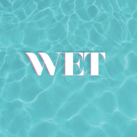 WET- book- cover